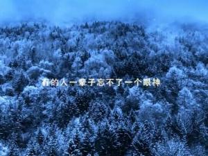 美在雅安超唯美宣传片
